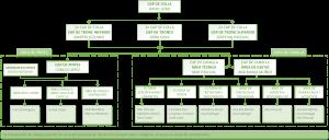 organigrama tècnica 2016-2017 Op